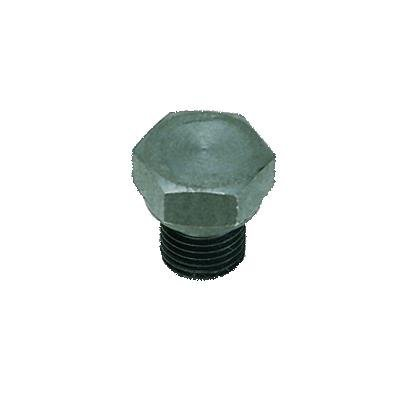 PLUG IN STAAL MET BINNEN ZESKANT BSP CYL/METR - C: G1/8 | 0210 10 00