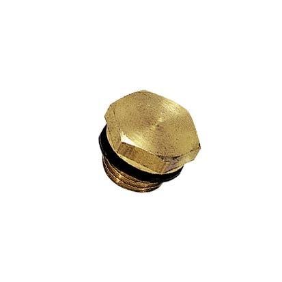PLUG M/BUITENZESKANT BSP CYL/METR - C: G1/4 | 0220 13 00