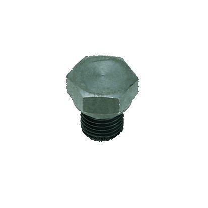 PLUG IN STAAL MET BINNEN ZESKANT BSP CYL/METR - C: M8x1,25 | 0210 57 00